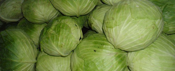Cabbage Soup Diet Exposed