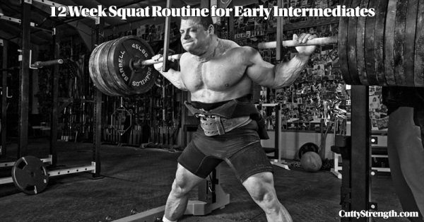 12 Week Early Intermediate Squat Routine
