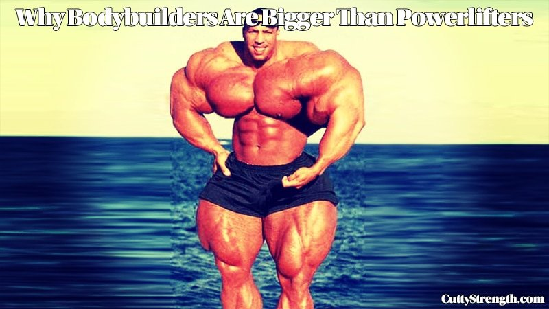 Why Bodybuilders Are Bigger Than Powerlifters