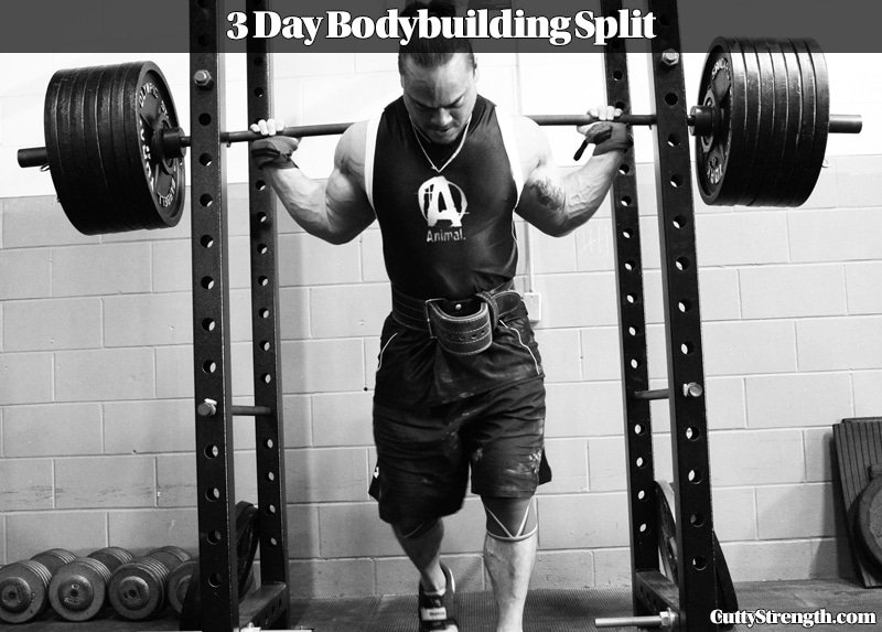 Bodybuilding Routine: 3 Day Split